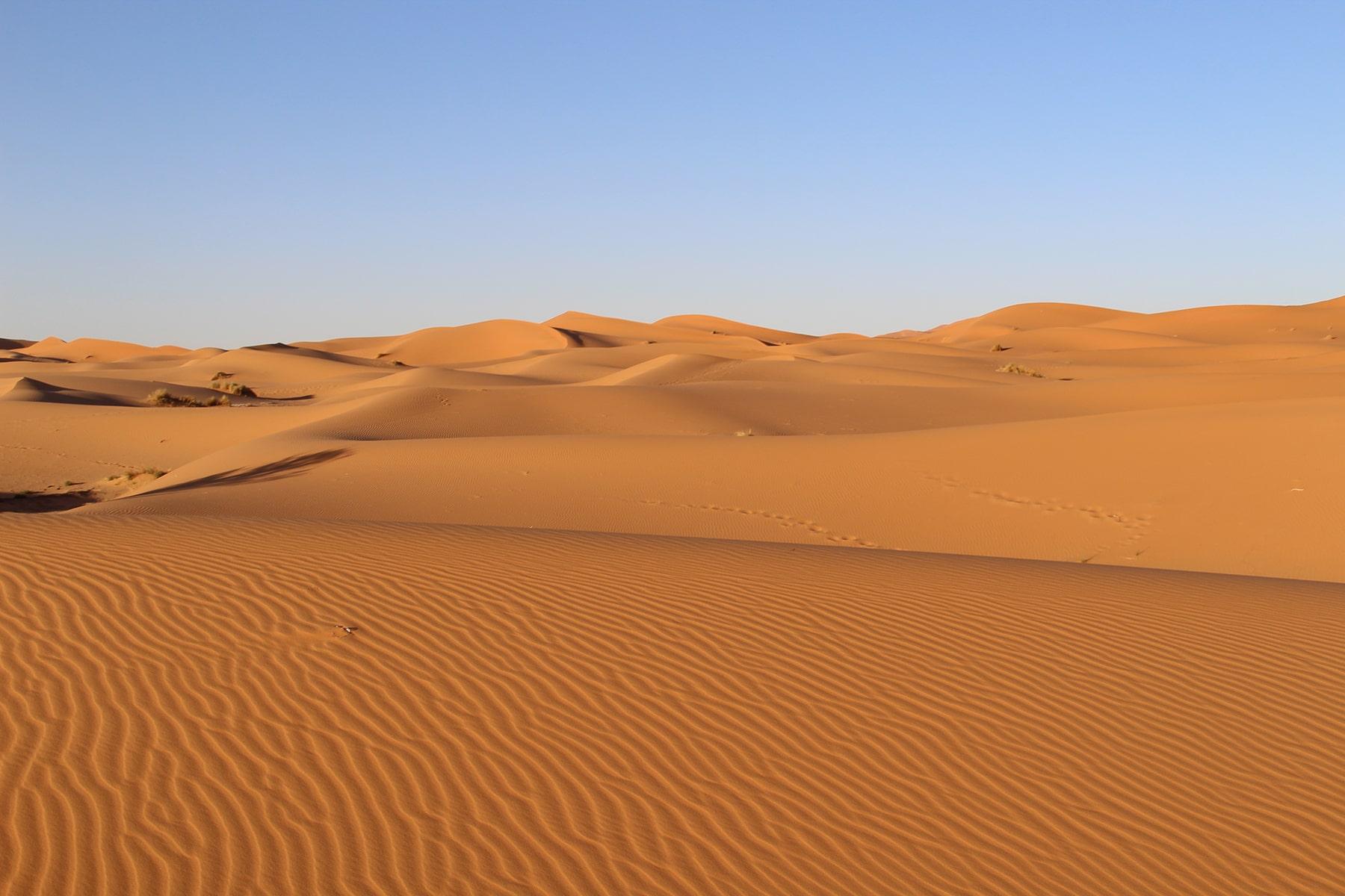 Dune a Merzouga (deserto del Sahara)