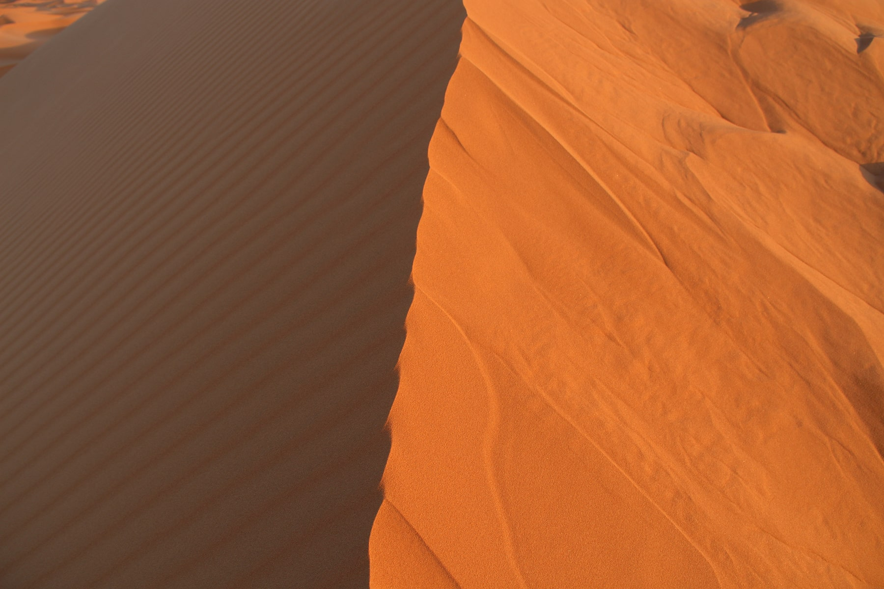 Sun and shade of Sahara desert dune
