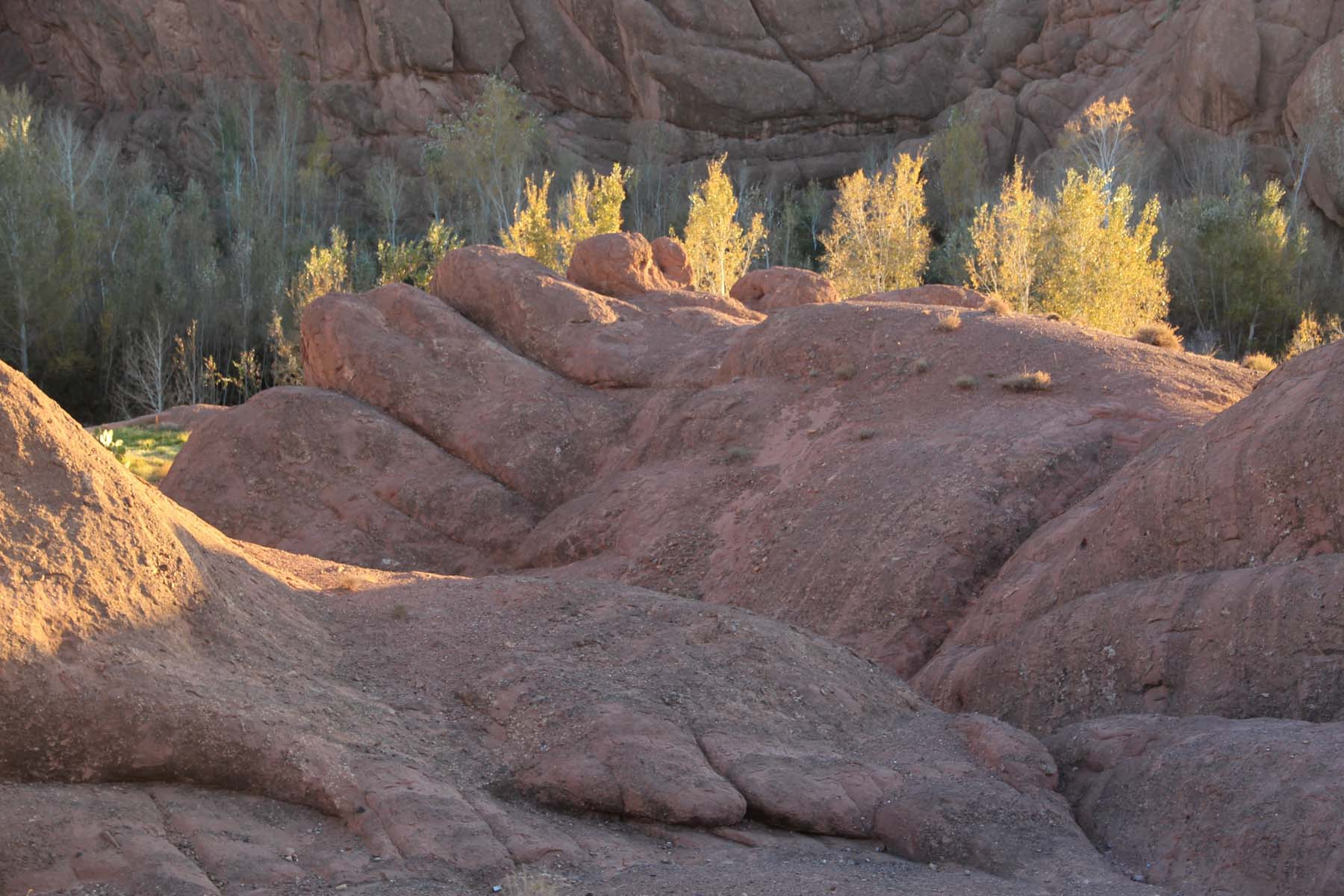 A rock of the Dades gorges that looks like a hand
