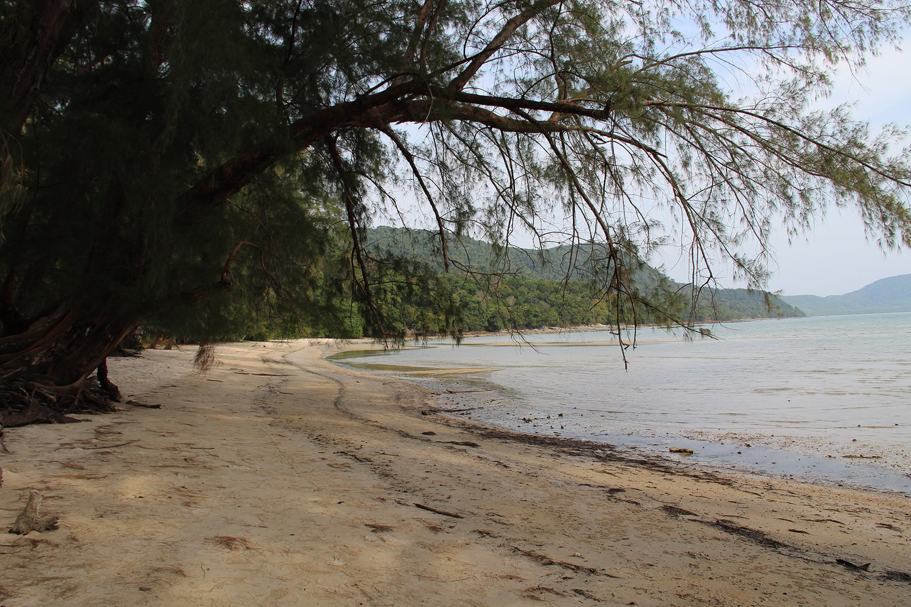 Khlong Son beach (Son Bay Beach) in Koh Yao Yai with trees