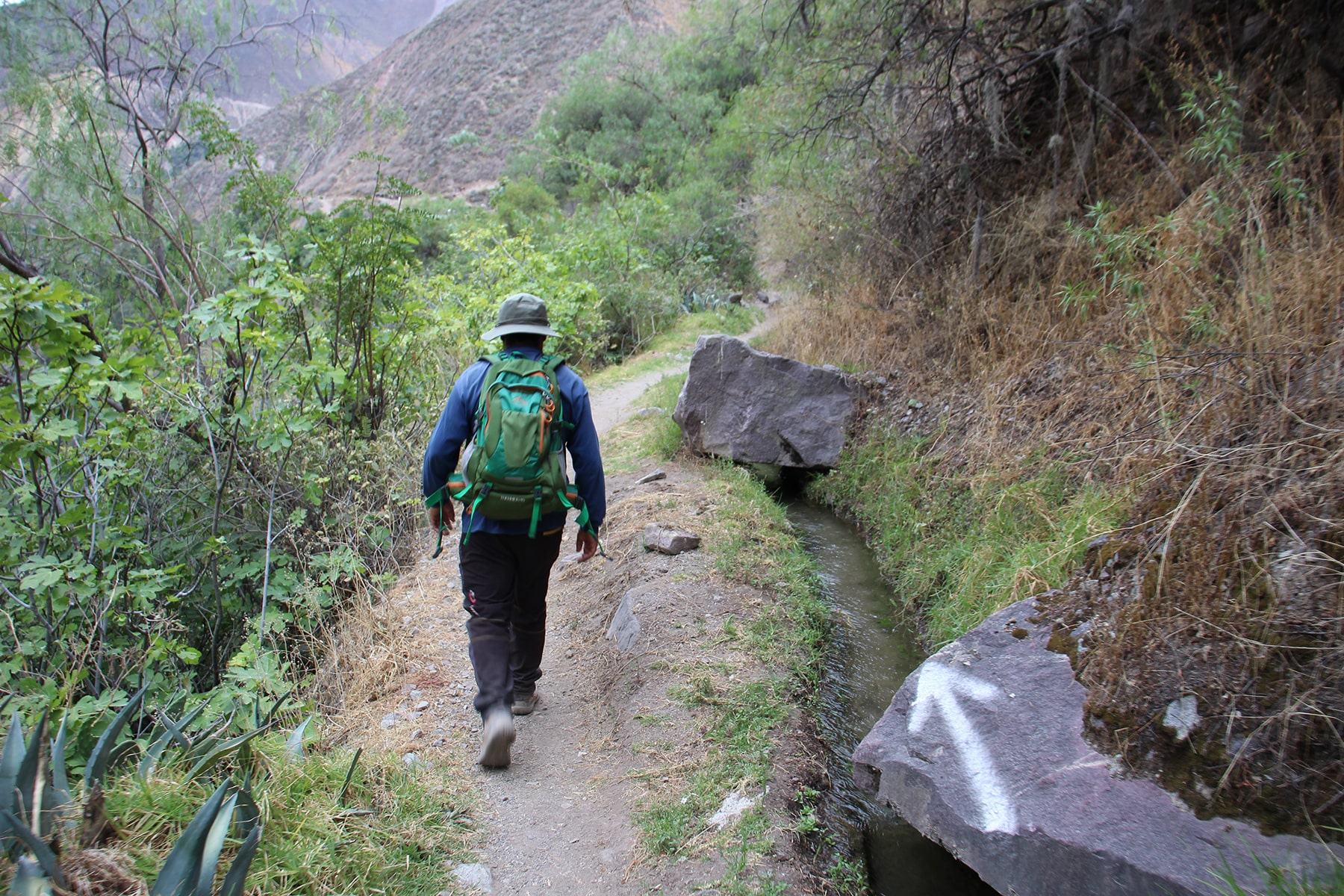 Green path in Colca Canyon