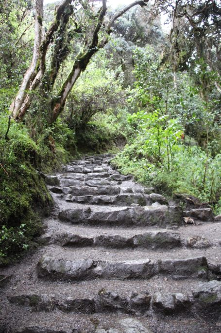 Steps on the second day on inca trail