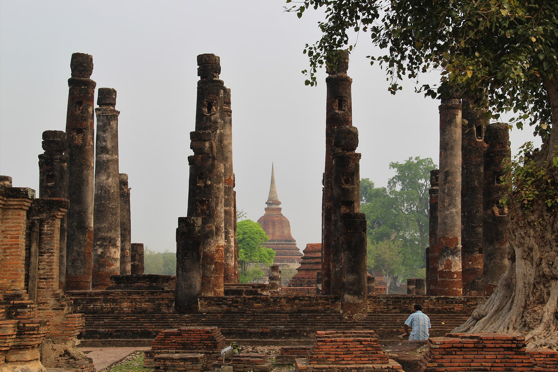Man sitting in Old Sukhothai columns ruins beside a big tree
