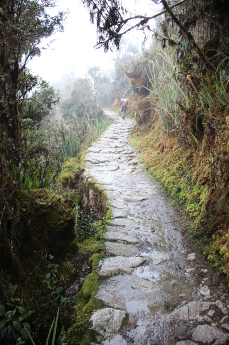 Stone path on third day of Inca Trail