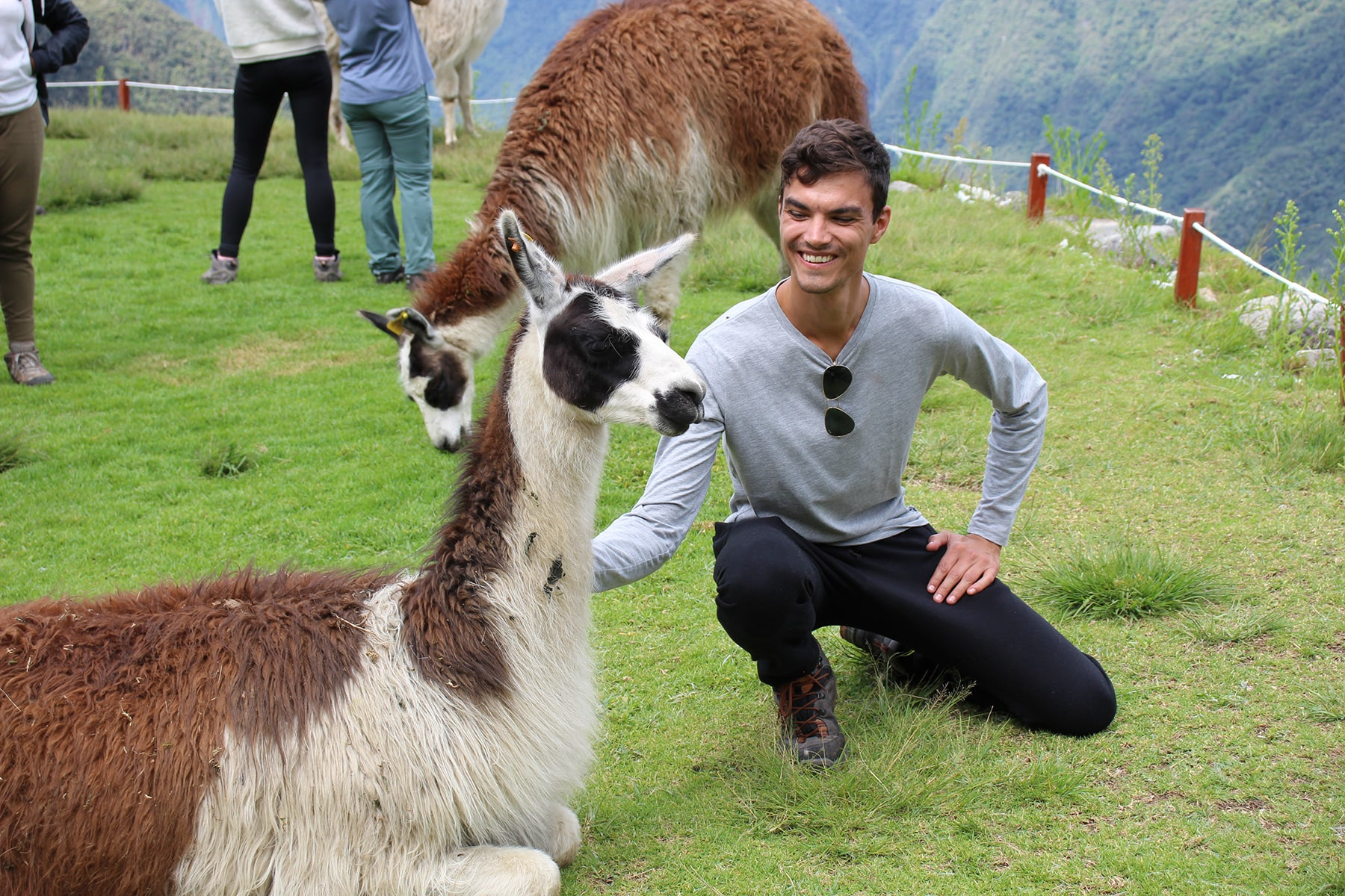 A smiling Florian with a llama