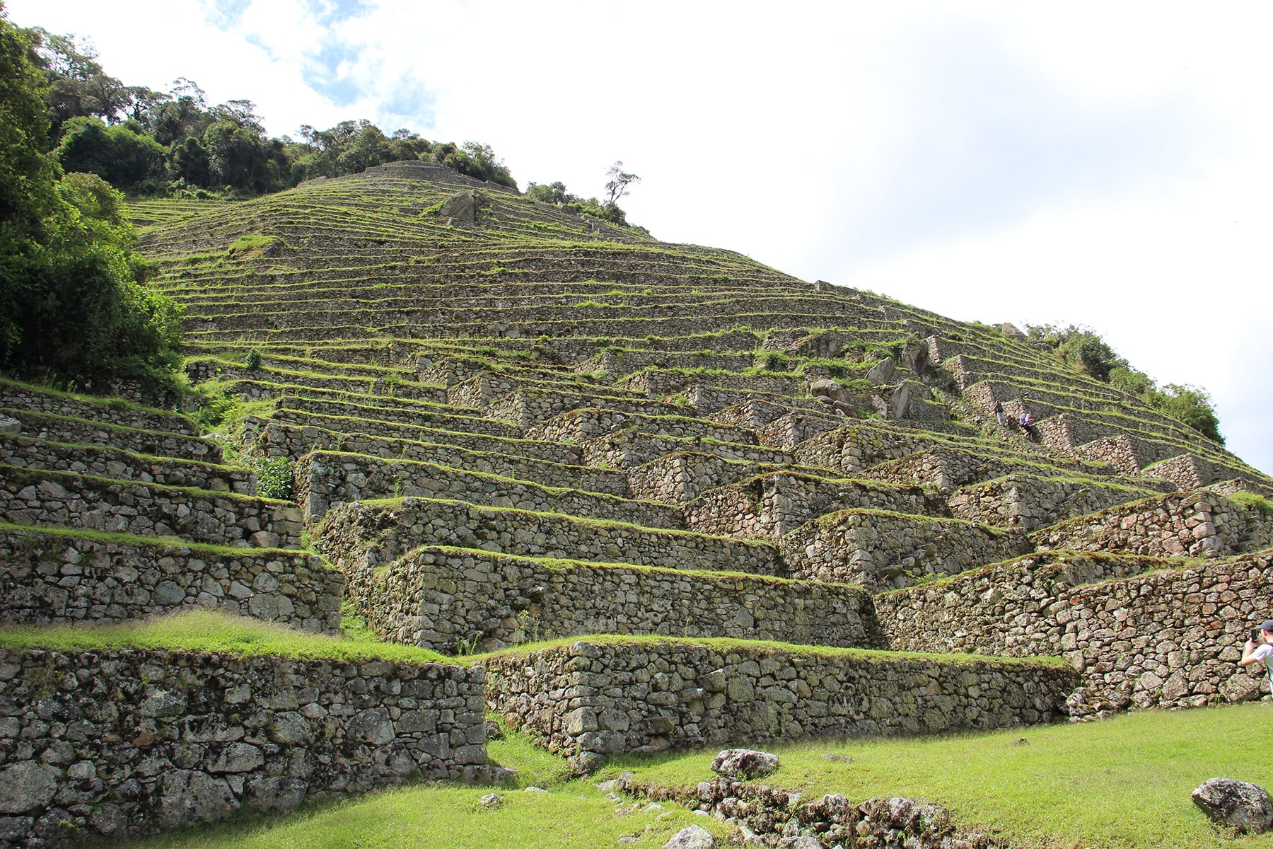 Intipata site with terraces