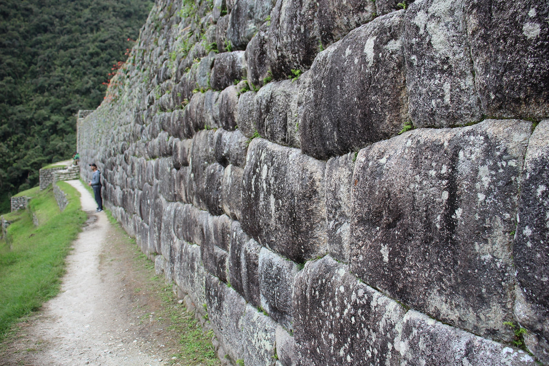 Muro di pietra nel sito di Wiñay Wayna