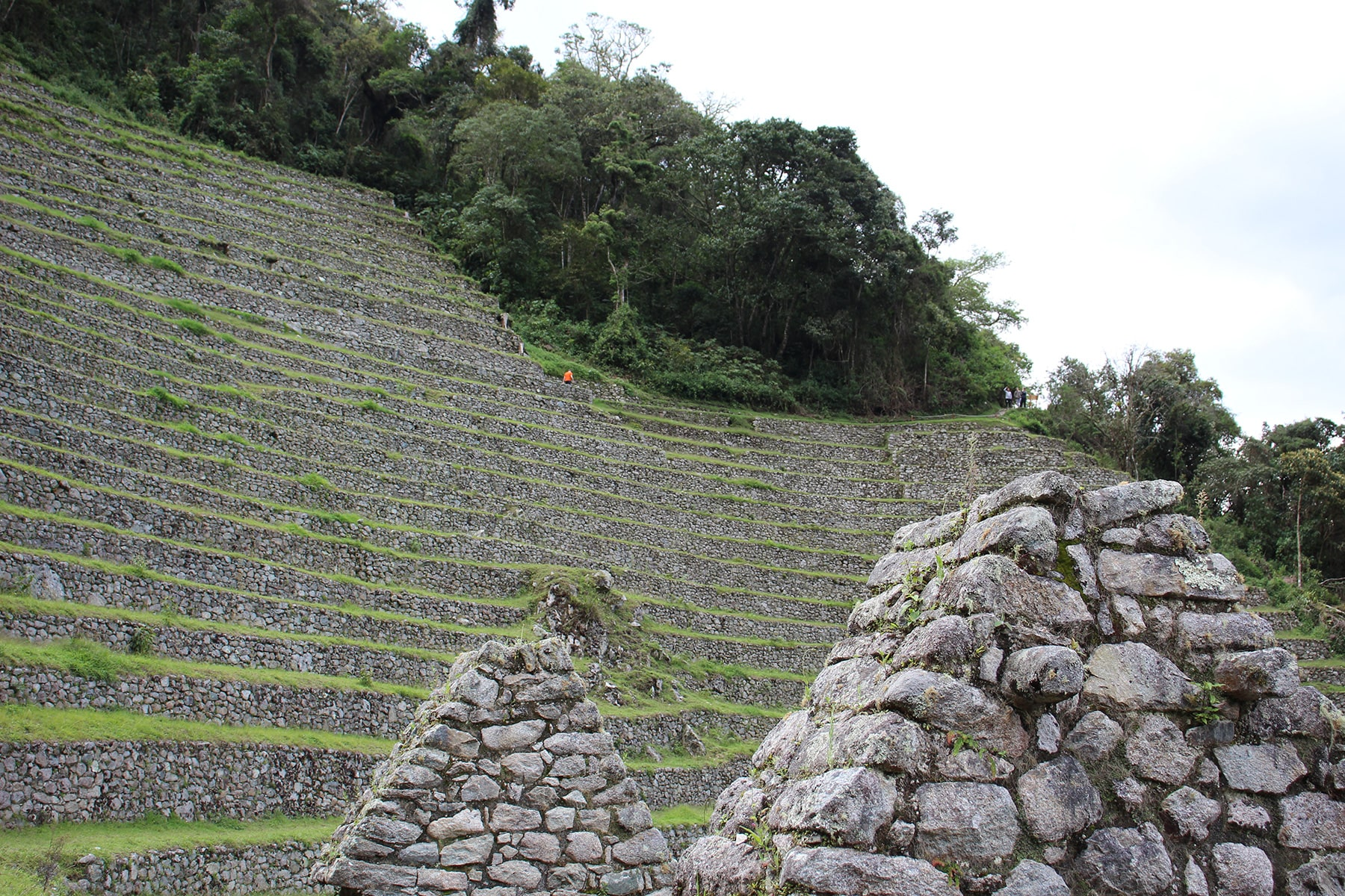 Wiñay wayna site terraces and roofs