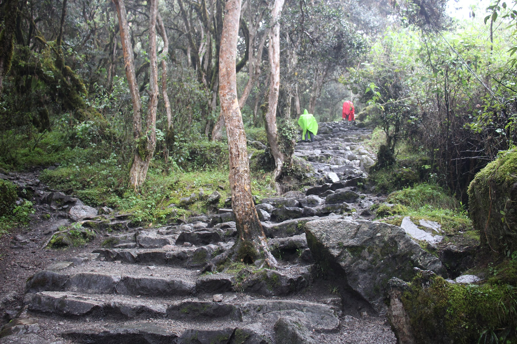 Second day Inca trail under the rain