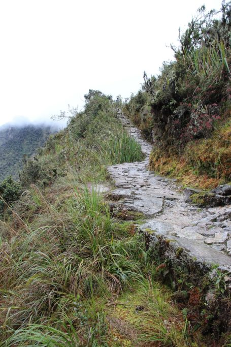 The path on third day Inca Trail
