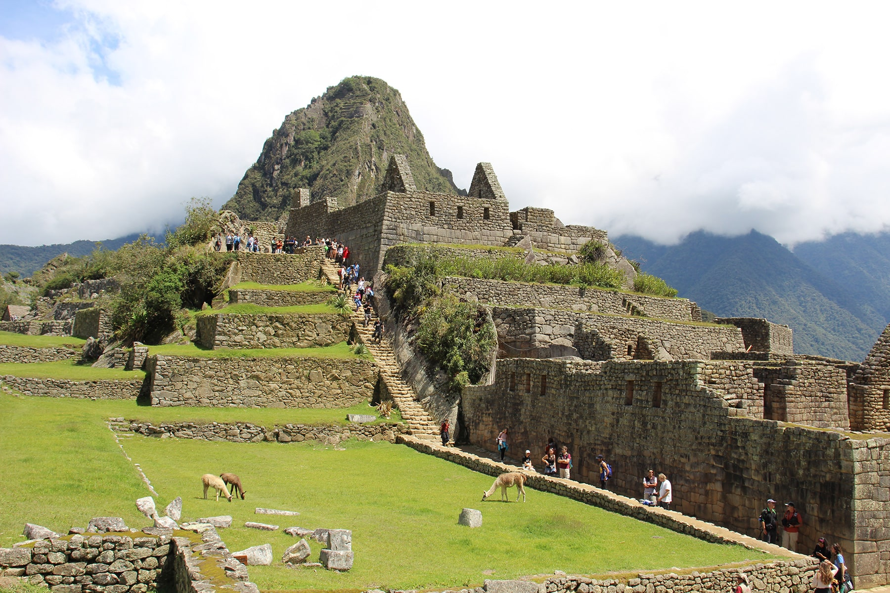 View on stone houses in Machu Picchu