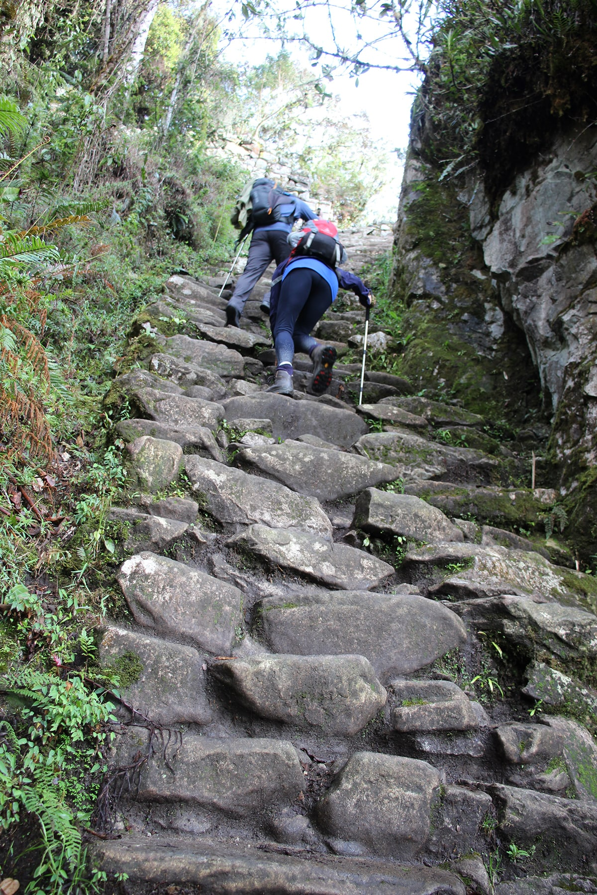 Le gringo killer, Inca Trail