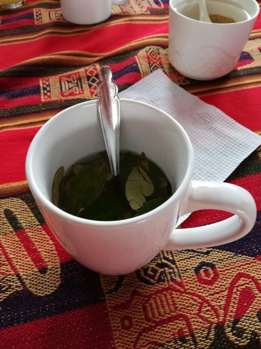 Tea with coca leaves